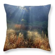 Morning Rays Through Live Oaks Throw Pillow