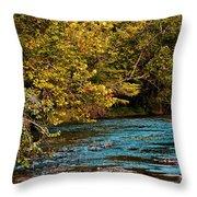 Morning River Throw Pillow