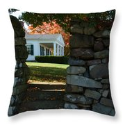 Morning Room Throw Pillow