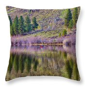 Morning Rowing Throw Pillow