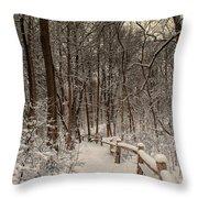 Morning Snow Path Throw Pillow