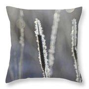 Morning Sparkle Throw Pillow