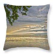 Morning Storm Throw Pillow
