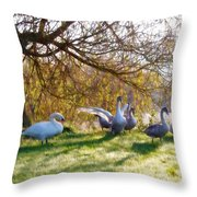 Morning Stretch - Impressions Throw Pillow
