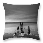 Morning Suds Bw Throw Pillow