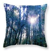 Morning Sun Rays Throw Pillow