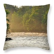 Morning Sunbeam Throw Pillow