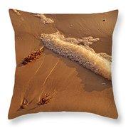 Morning Tide II Throw Pillow