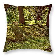 Morning Tranquility Throw Pillow