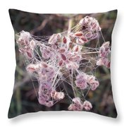 Morning With A Spider Throw Pillow