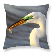 Morning's Catch Throw Pillow
