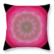 Morphed Art Globe 12 Throw Pillow