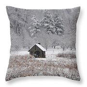Morris Arboretum Mill In Winter Throw Pillow