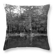 Morrison Springs Drought Throw Pillow