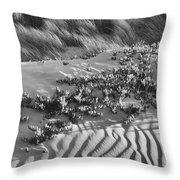 Morro Beach Textures Bw Throw Pillow