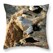 Morro Rock Nesting Throw Pillow