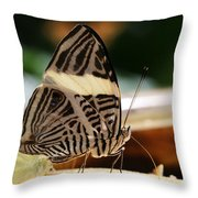 Mosaic Butterfly Throw Pillow