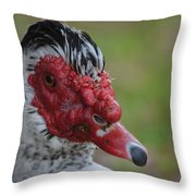 Moscovy Duck With Hairdo Throw Pillow