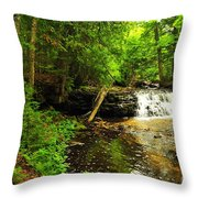 Mosquito Falls In Michigan Usa Throw Pillow