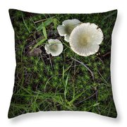 Moss And Fungi Throw Pillow