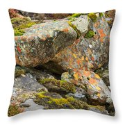 Moss And Lichens In The Scottish Highlands Throw Pillow