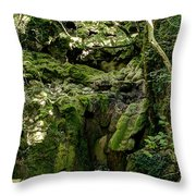 Moss And Stones By The Turquoise Forest Pond On A Summer Day No4 Throw Pillow