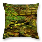 Moss Bridge Throw Pillow