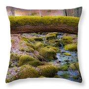Moss Bridge Throw Pillow