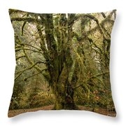 Moss-covered Bigleaf Maple  Throw Pillow