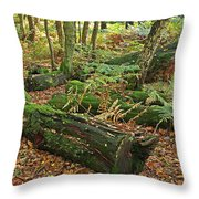 Moss Covered Logs On The Forest Floor Throw Pillow