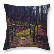 Moss Covered Path Throw Pillow