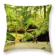Moss Covered Rocks In Forest, Rocky Throw Pillow