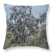Moss Covered Tree Throw Pillow