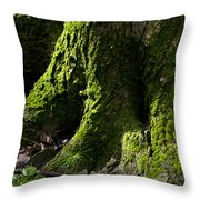 Moss Covered Tree Trunk Throw Pillow by Christina Rollo