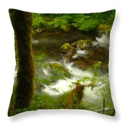 Moss Covered Trees Foregound Eagle Creek Throw Pillow