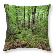 Moss Covered Trees In Forest, Lord Throw Pillow