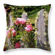 Moss Fence Throw Pillow