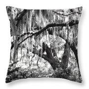 Moss In A Magical Land Throw Pillow