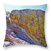 Moss On Giant Rocks Along Echo Canyon Trail In Chiricahua National Monument-arizona  Throw Pillow