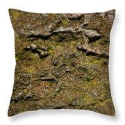 Moss On Rock Throw Pillow
