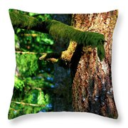 Moss On The Evergreens Throw Pillow