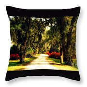 Moss On The Trees At Monks Corner In Charleston Throw Pillow