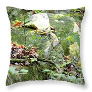 Moss Rock 3 Throw Pillow