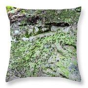 Moss Rock Throw Pillow