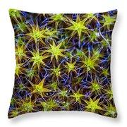 Moss Rockanje Netherlands Throw Pillow