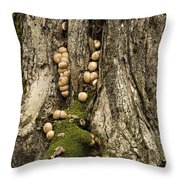 Moss-shrooms On A Tree Throw Pillow