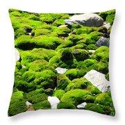 Mosscape Throw Pillow