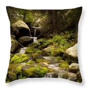 Mossy Falls 1 Throw Pillow