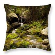 Mossy Falls 1 Throw Pillow