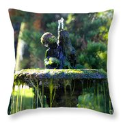Mossy Fountain Throw Pillow